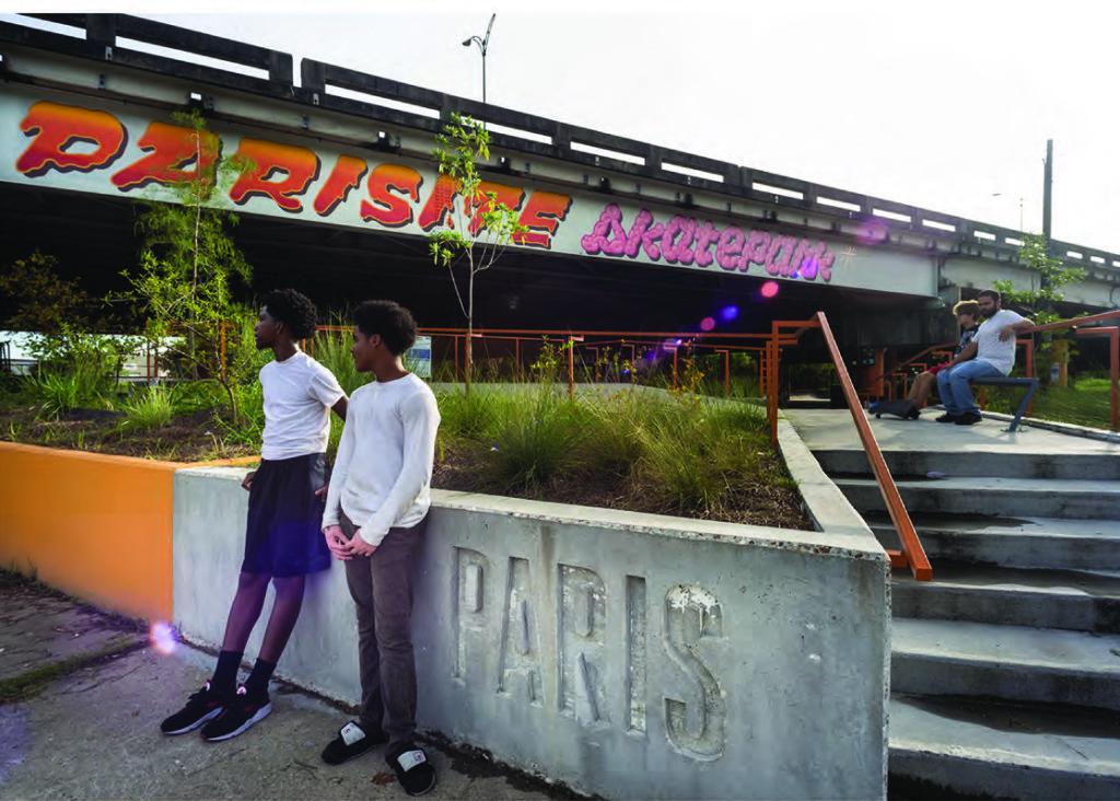 parisite skatepark